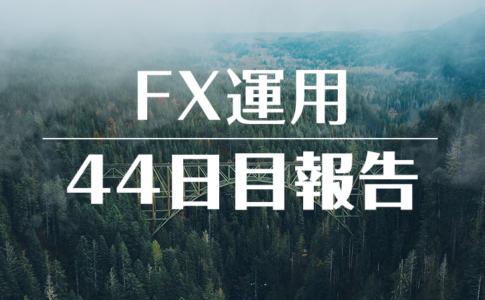 FXスワップ運用44