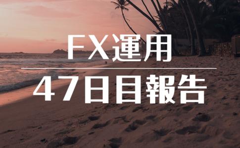 FXスワップ運用47