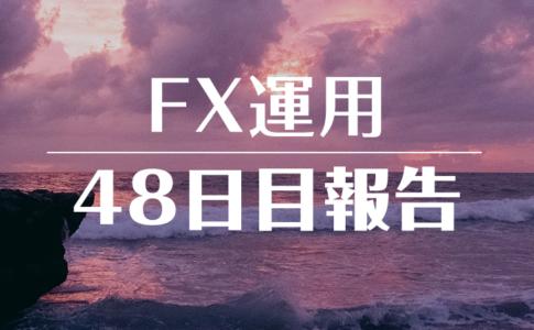 FXスワップ運用48