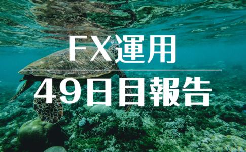 FXスワップ運用49