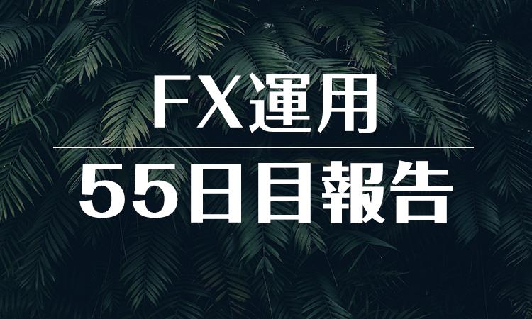 FXスワップ運用55