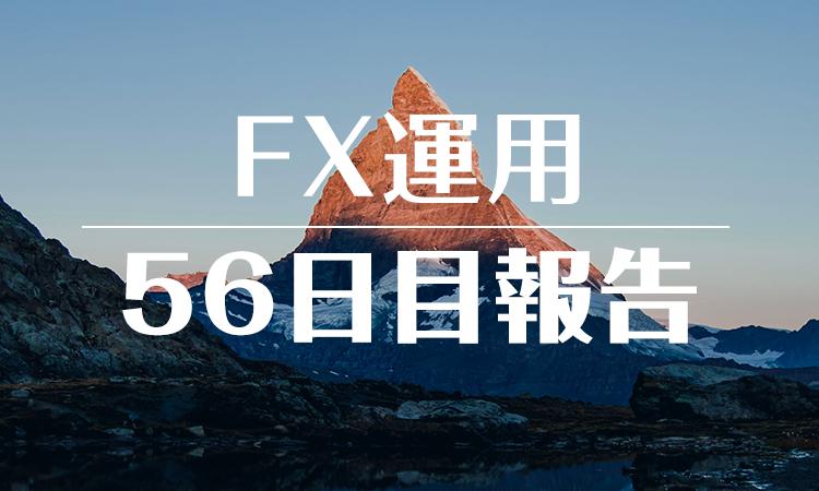 FXスワップ運用56