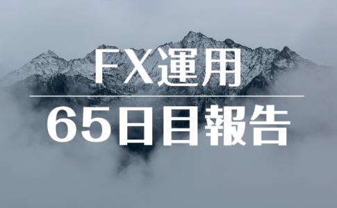 FXスワップ運用65