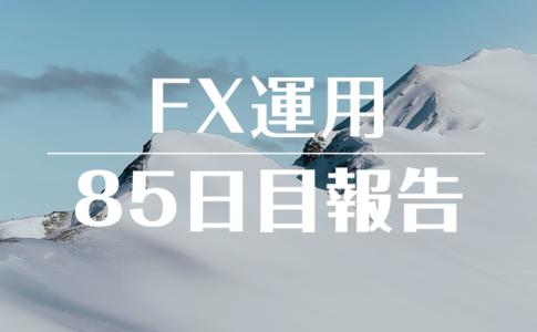 FXスワップ運用85