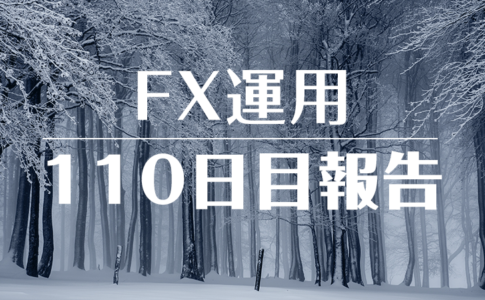 FXスワップ運用110