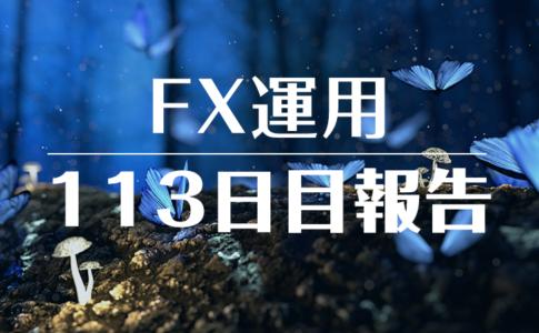 FXスワップ運用113