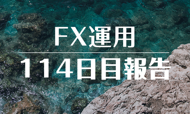 FXスワップ運用114