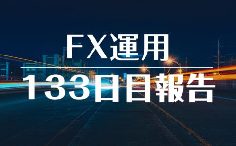 FXスワップ運用133