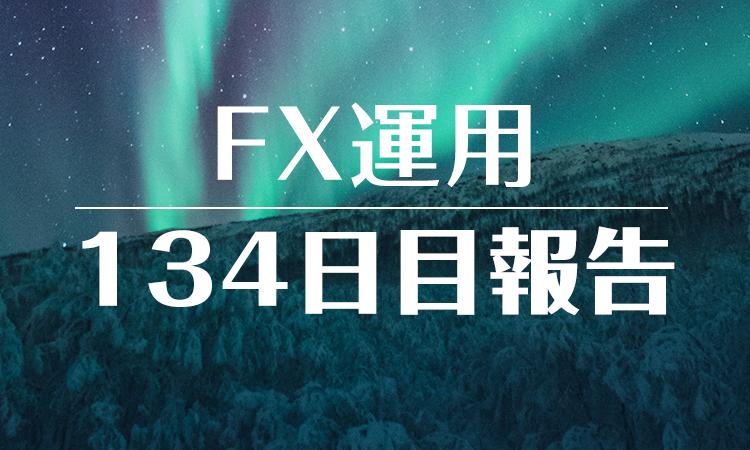 FXスワップ運用134