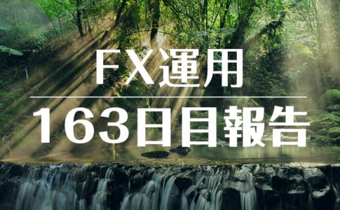 FXスワップ運用163
