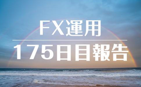 FXスワップ運用175