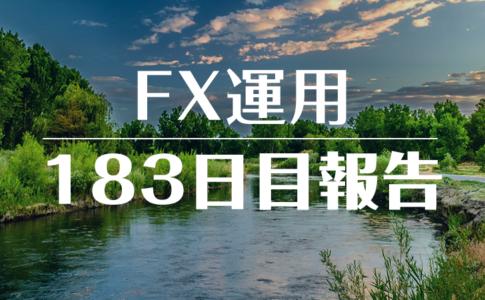 FXスワップ運用183