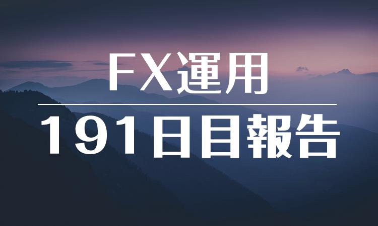 FXスワップ運用191