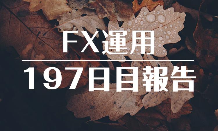 FXスワップ運用197