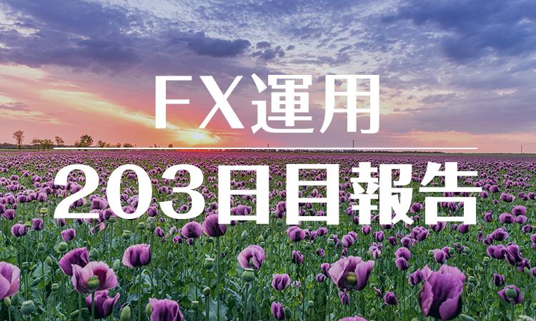 FXスワップ運用203