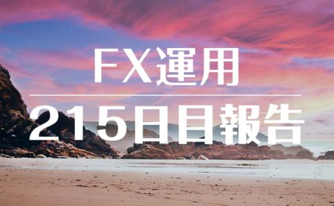 FXスワップ運用215