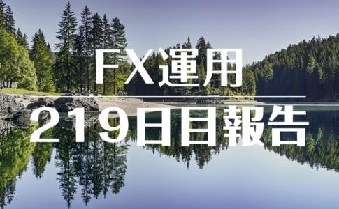 FXスワップ運用219