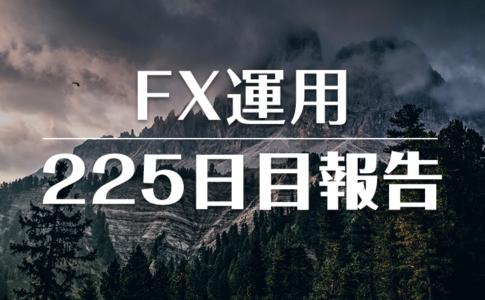 FXスワップ運用225
