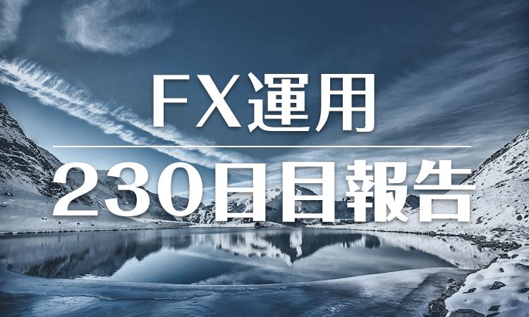 FXスワップ運用230