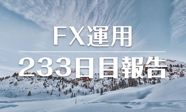 FXスワップ運用233