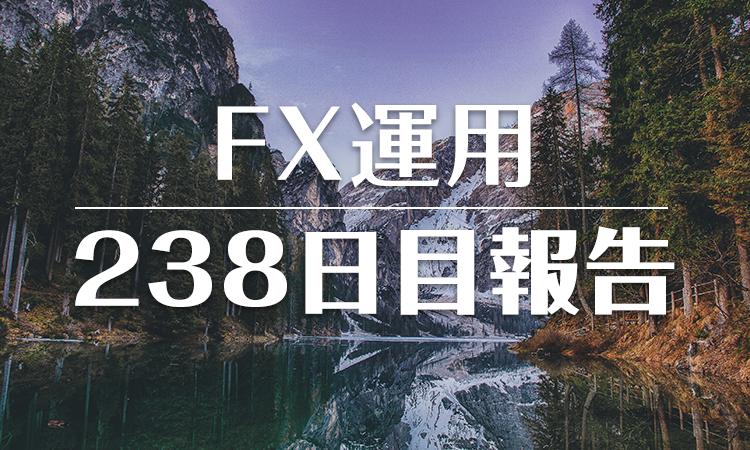 FXスワップ運用238