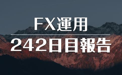 FXスワップ運用242