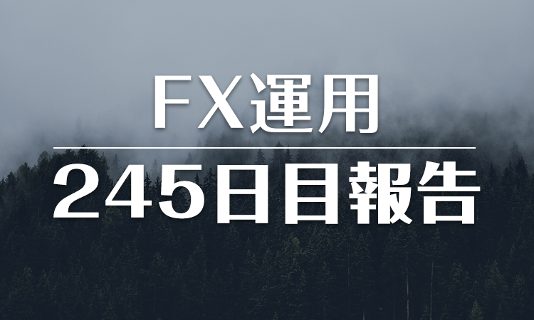FXスワップ運用245