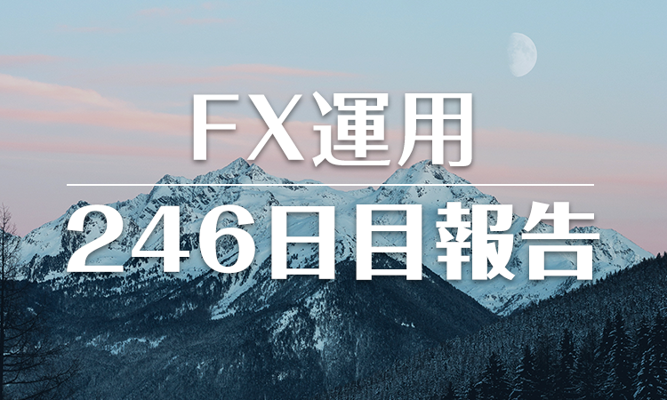 FXスワップ運用246