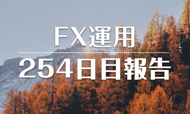 FXスワップ運用254