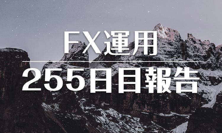 FXスワップ運用255