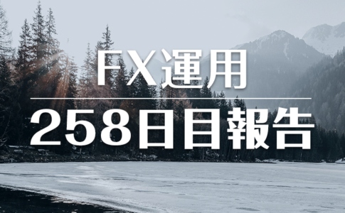 FXスワップ運用258