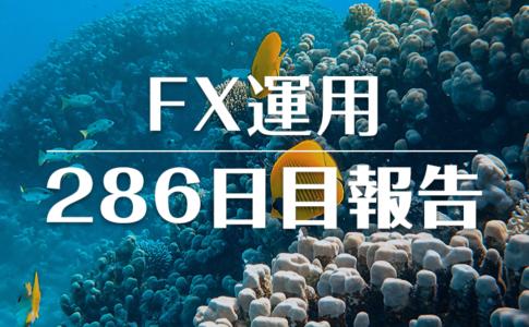 FXスワップ運用286
