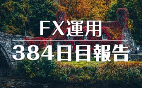 FXスワップ運用384