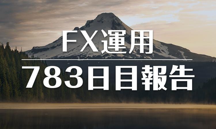 FXスワップ運用783