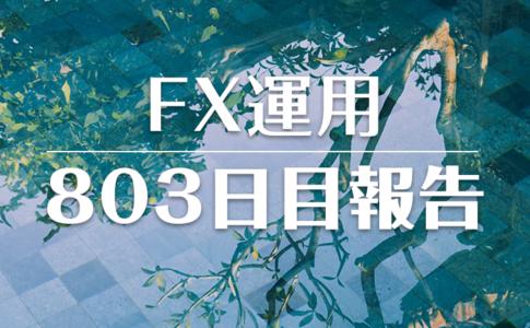 FXスワップ運用803
