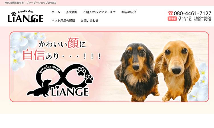 神奈川県海老名市でおすすめのブリーダー「大森愛ブリーダー」について